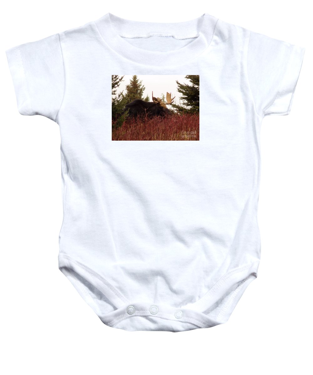 Moose Baby Onesie featuring the photograph A Big Fierce-eyed Bull Moose by William Tasker