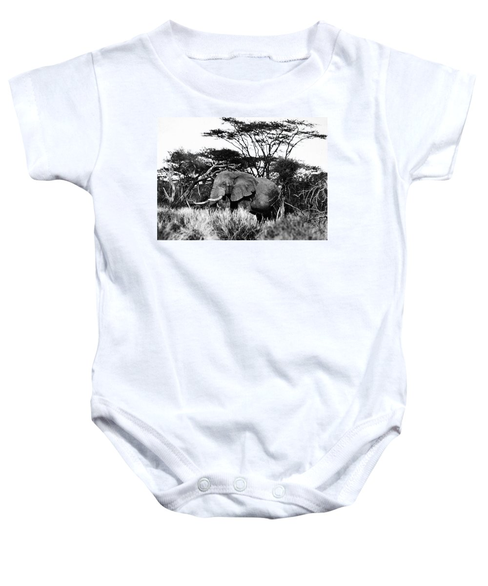 20th Century Baby Onesie featuring the photograph African Elephant by Granger