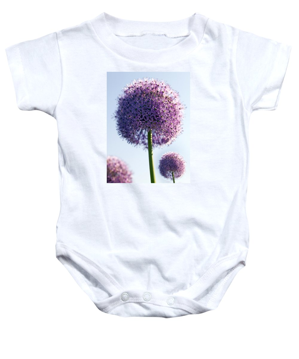 Allium Baby Onesie featuring the photograph Allium Flower by Tony Cordoza