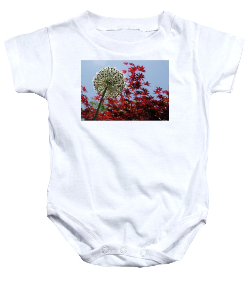 Flower Baby Onesie featuring the photograph Allium by Spirit Vision Photography