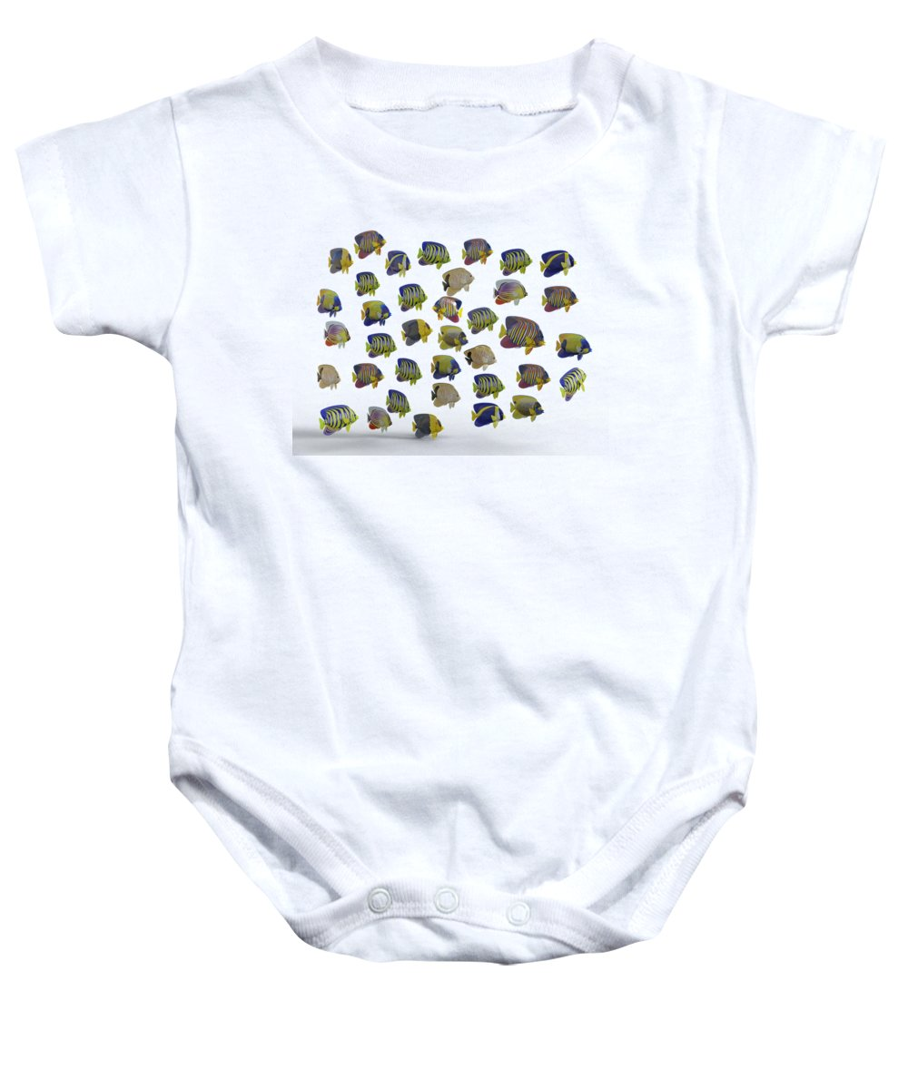 Habitat Baby Onesies