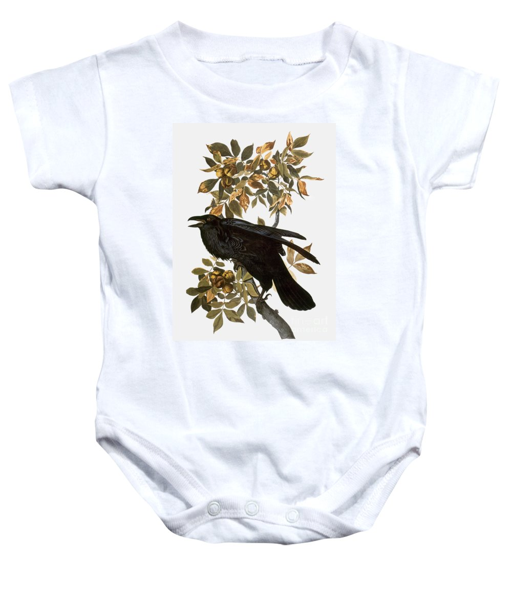 1838 Baby Onesie featuring the photograph Audubon: Raven by Granger