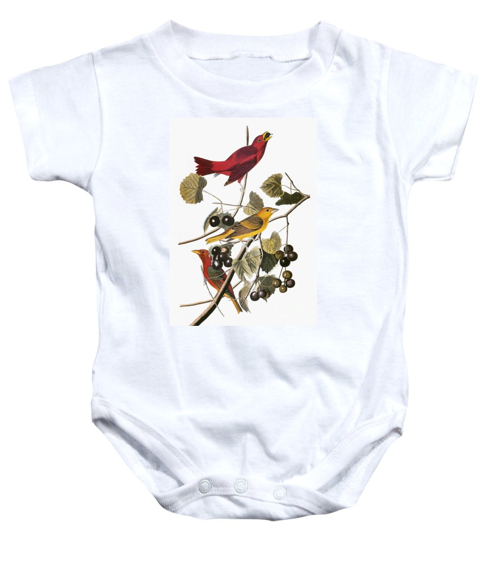 1838 Baby Onesie featuring the photograph Audubon: Tanager by Granger