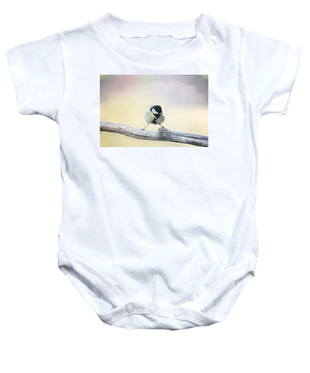 Balancing Act Baby Onesie featuring the photograph Balancing Act by Heike Hultsch