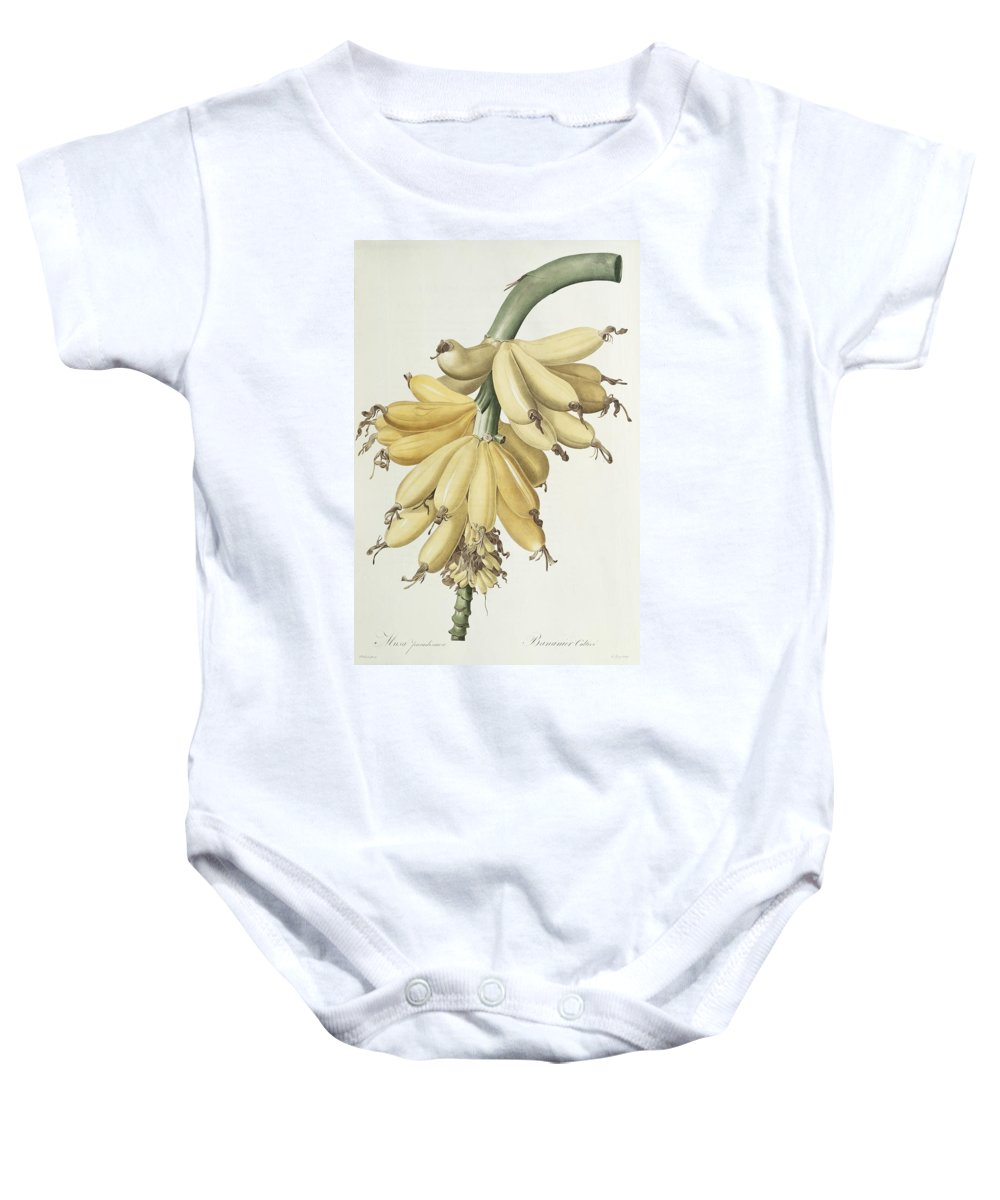 Banana Baby Onesie featuring the drawing Bananas by Pierre Joseph Redoute