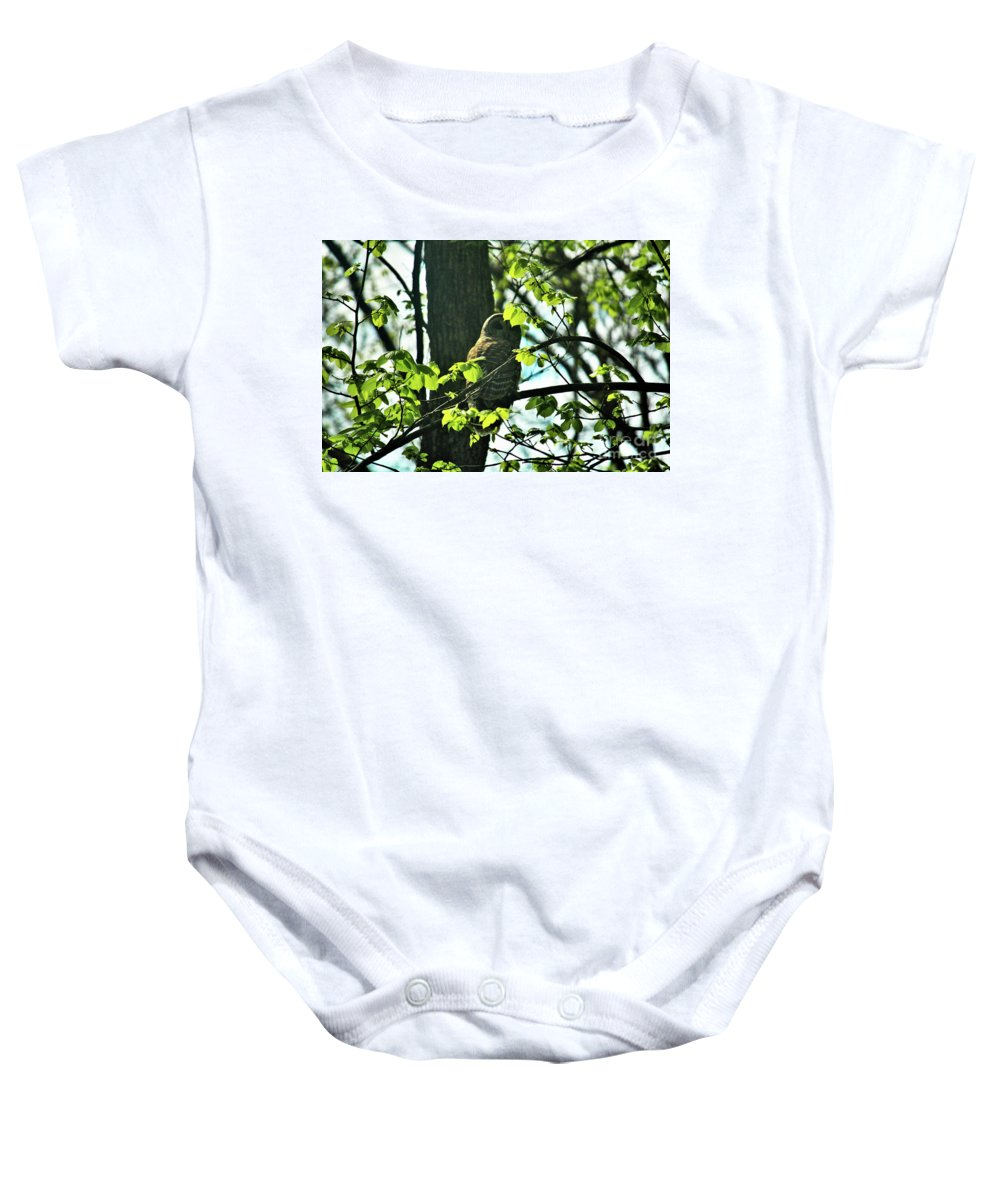 Nature Baby Onesie featuring the photograph Barred Owl by Laura Birr Brown