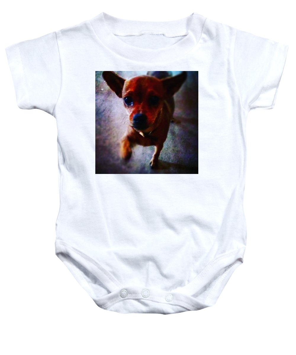 Dog Baby Onesie featuring the photograph Begging by Aliens Abducted The Artist