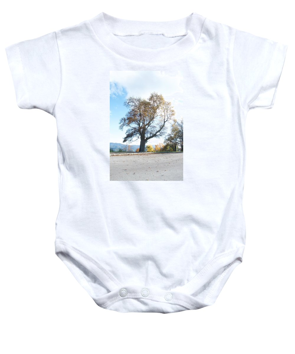 Tree Baby Onesie featuring the photograph Big Old Tree by Dan Ya