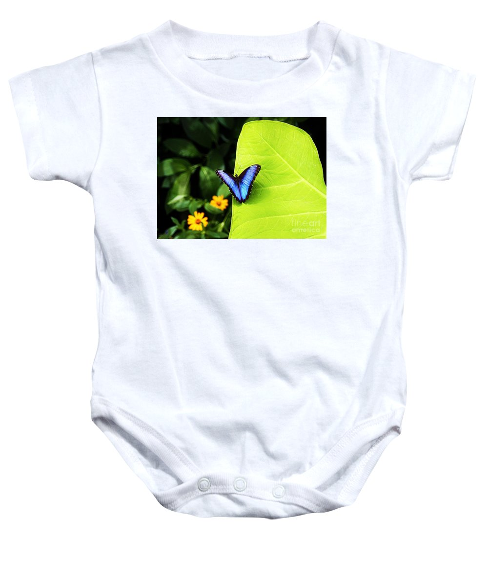 Blue Morpho Butterfly Baby Onesie featuring the photograph Blue Morpho Butterfly by Patti Whitten