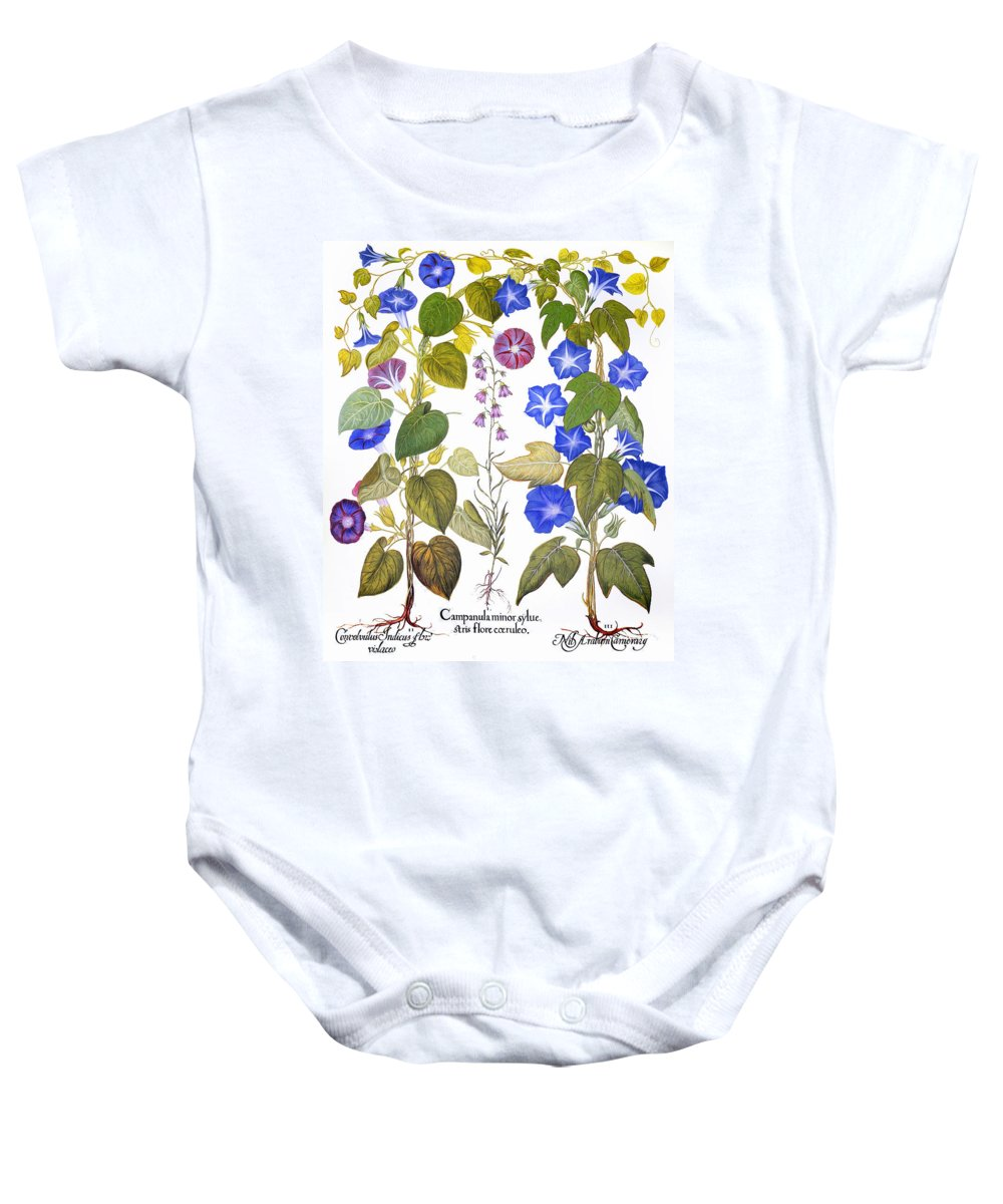 1613 Baby Onesie featuring the photograph Bluebell And Morning Glory by Granger