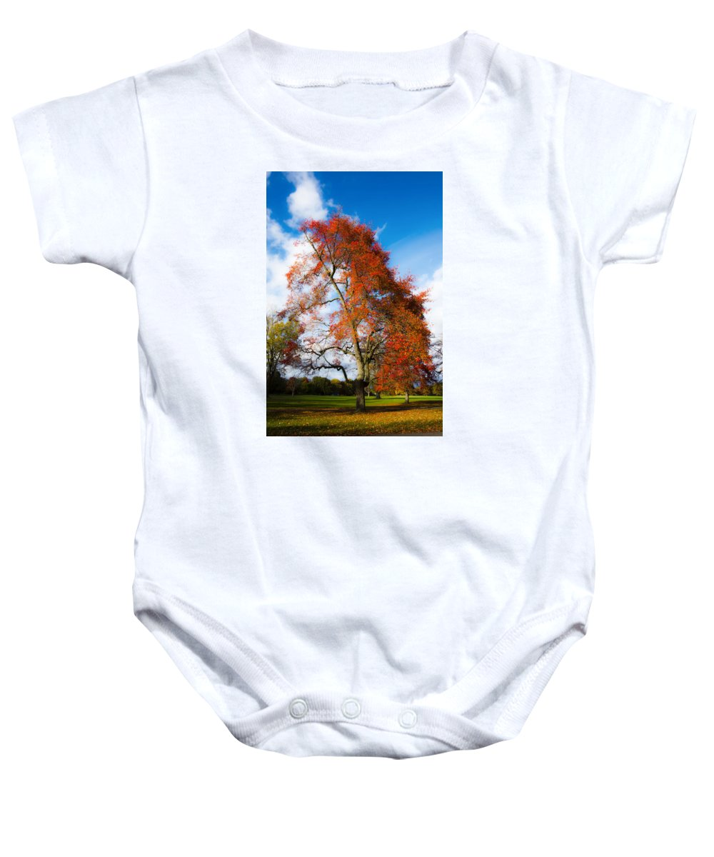 Fall Colors Baby Onesie featuring the photograph Bright Fall Colors by Tracy Winter