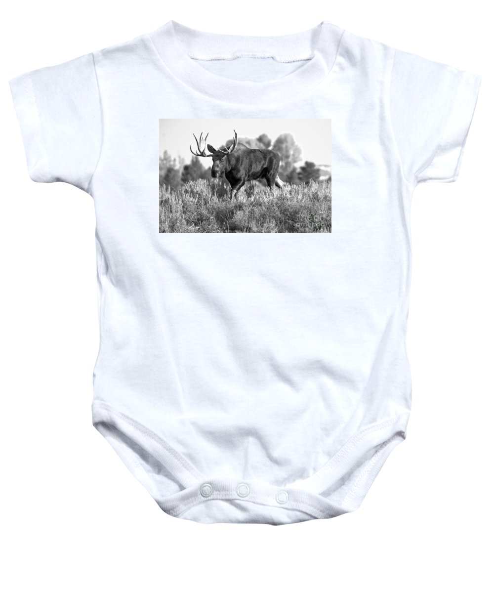 Bull Moose Baby Onesie featuring the photograph Bull On A Blue Sky Day Black And White by Adam Jewell