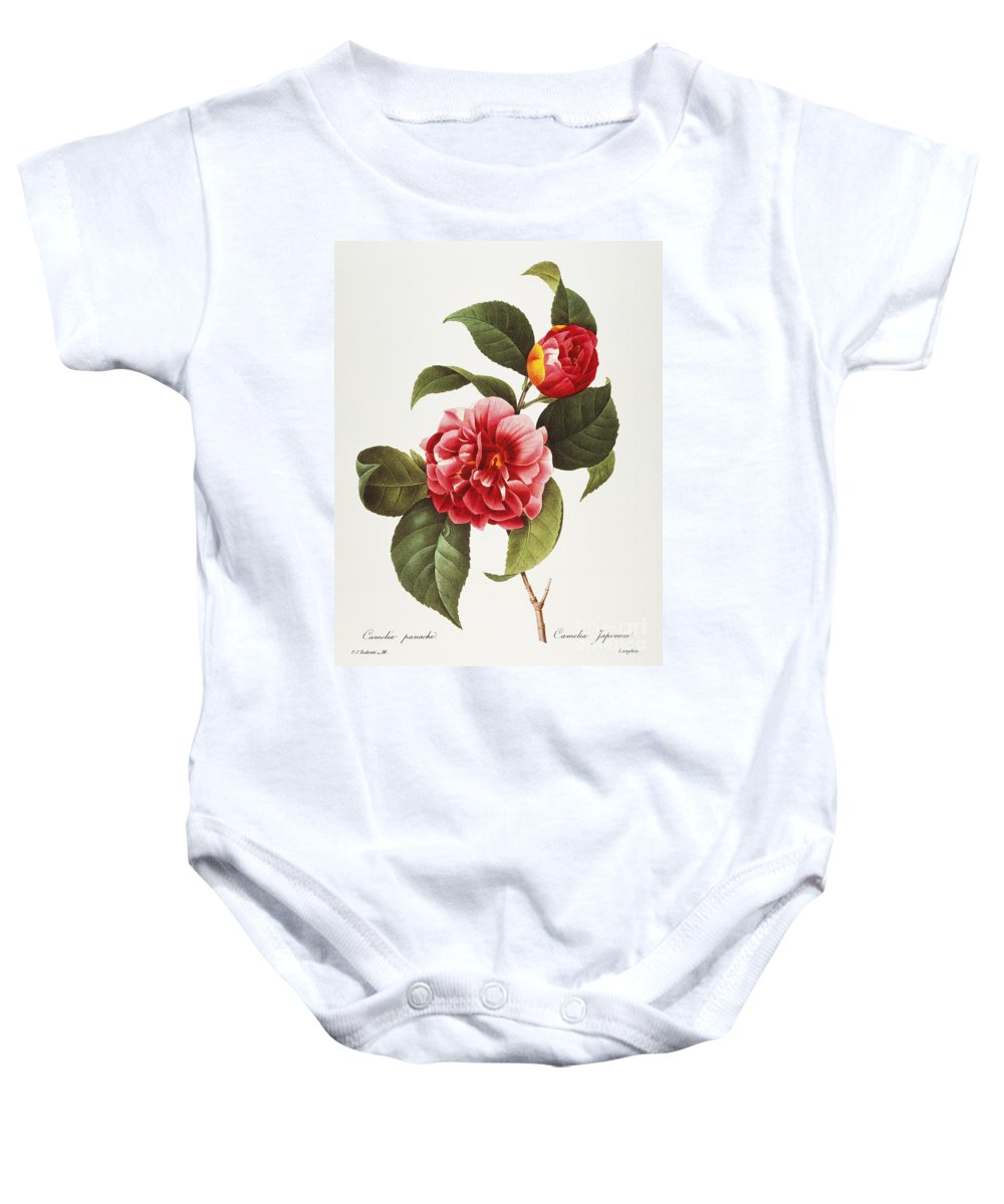 1833 Baby Onesie featuring the photograph Camellia, 1833 by Granger