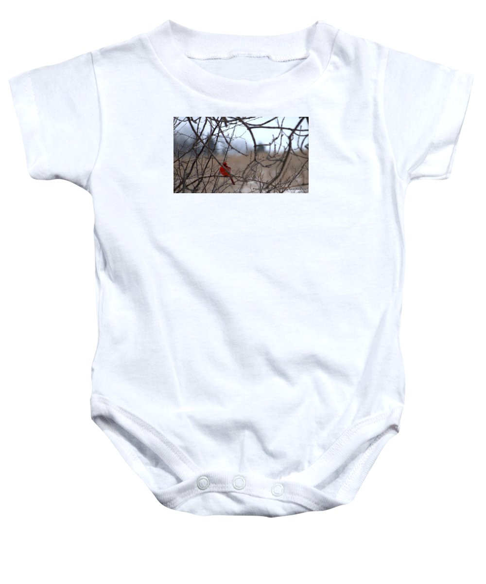 Landscape Baby Onesie featuring the photograph Cardinal 2 by Karen Mayer