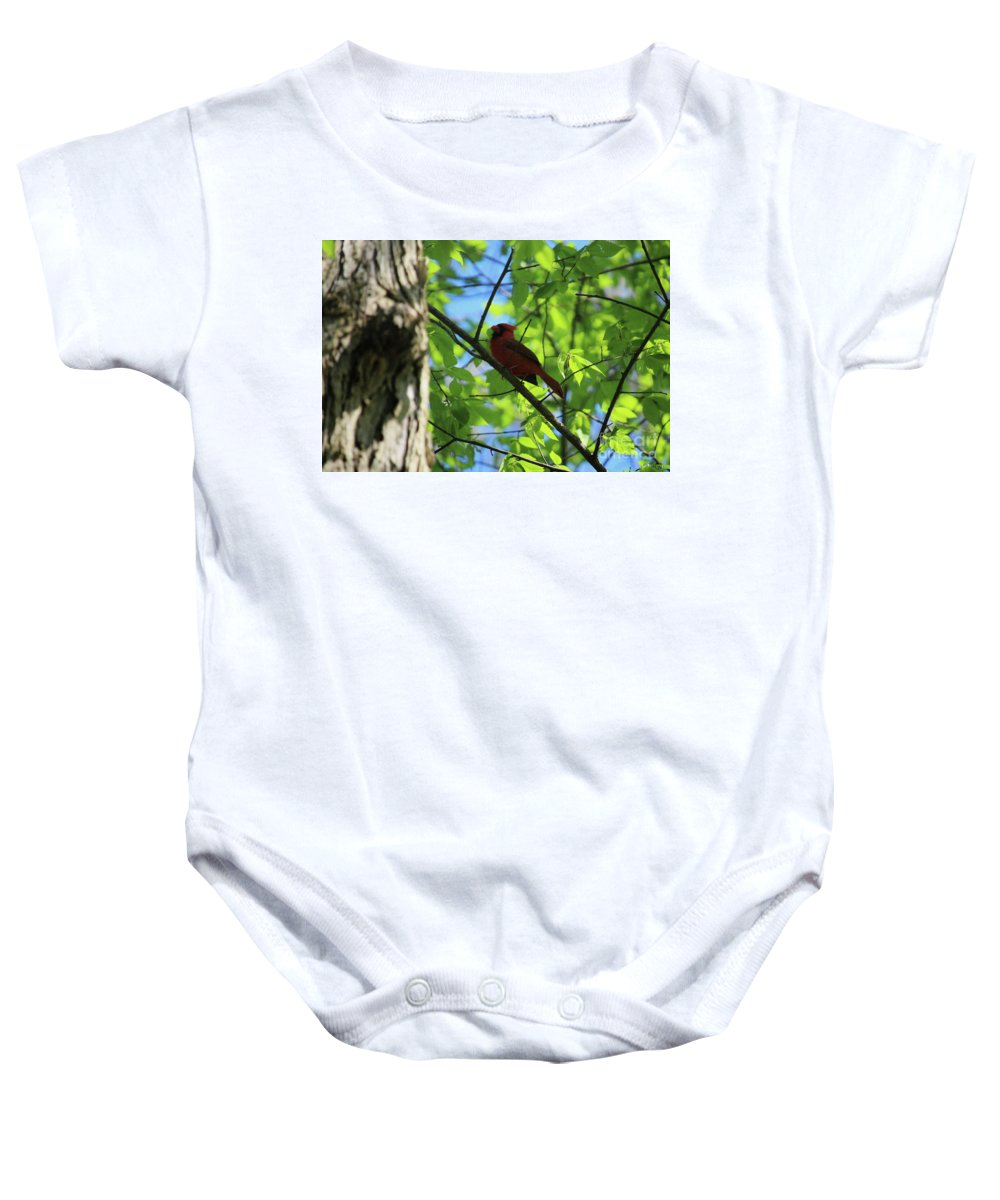 Illinois Baby Onesie featuring the photograph Cardinal In The Springtime by Laura Birr Brown