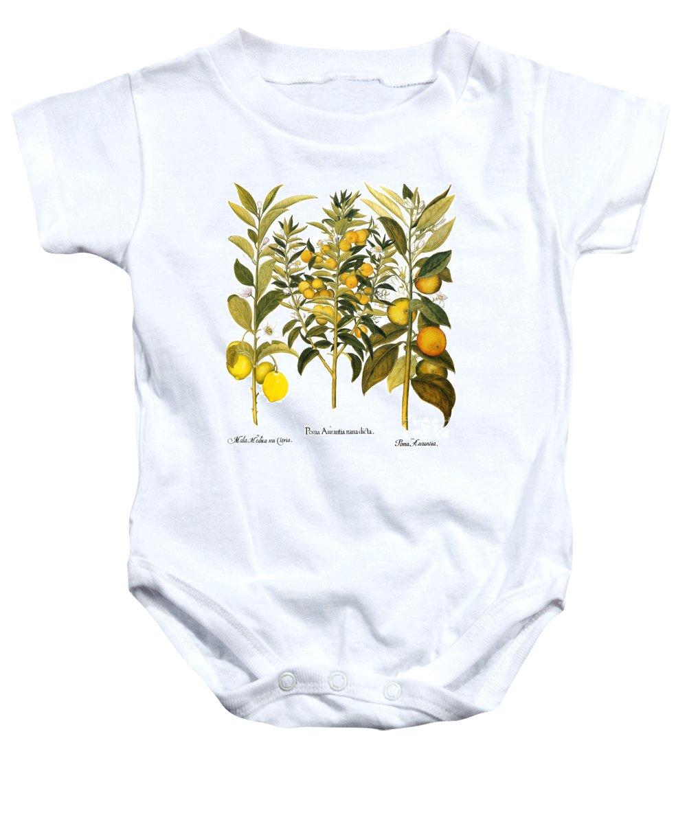 1613 Baby Onesie featuring the photograph Citron And Orange, 1613 by Granger
