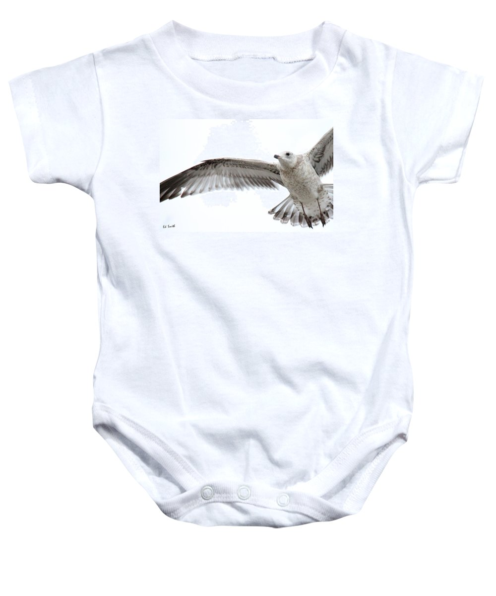 Coasting Baby Onesie featuring the photograph Coasting by Ed Smith