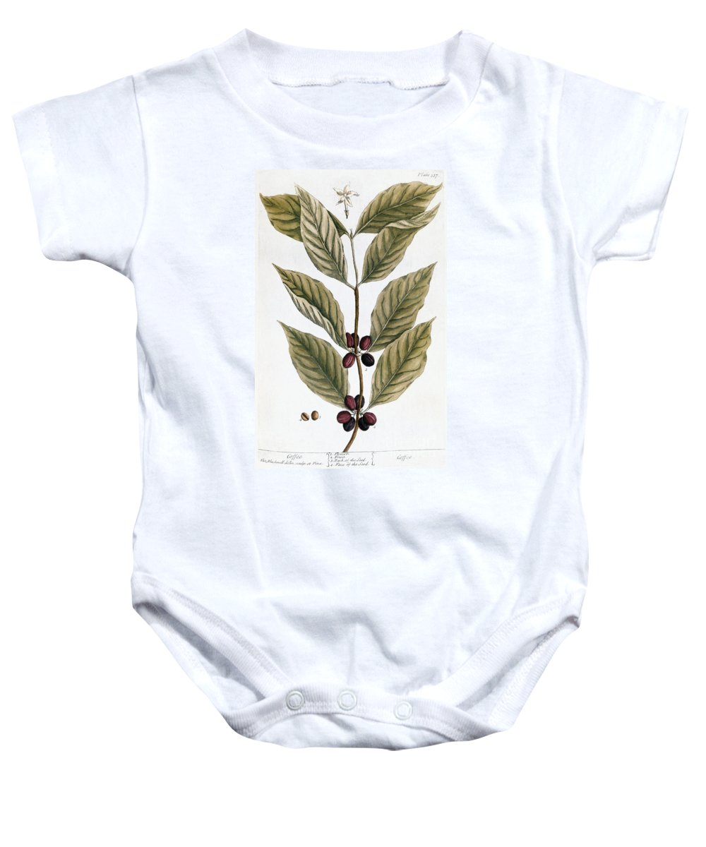1730s Baby Onesie featuring the photograph Coffee Plant, 1735 by Granger