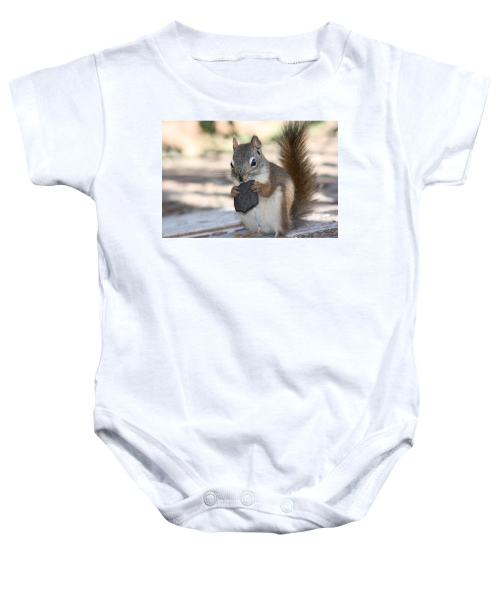 Cookie Squirrell Nature Wild Animal Chocolate Food Camping Outdoors Baby Onesie featuring the photograph Cookie Monster by Andrea Lawrence