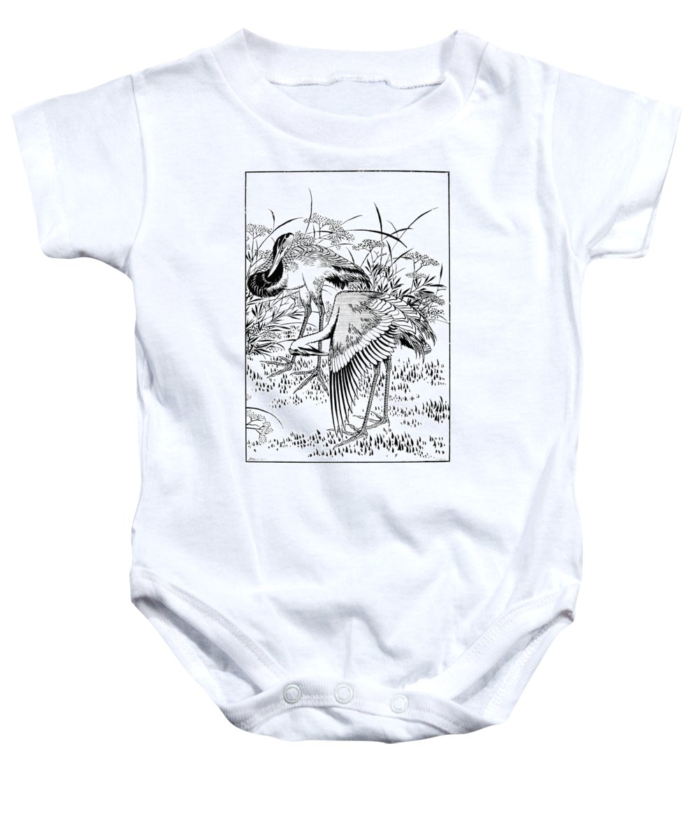 Biology Baby Onesie featuring the photograph Cranes by Granger