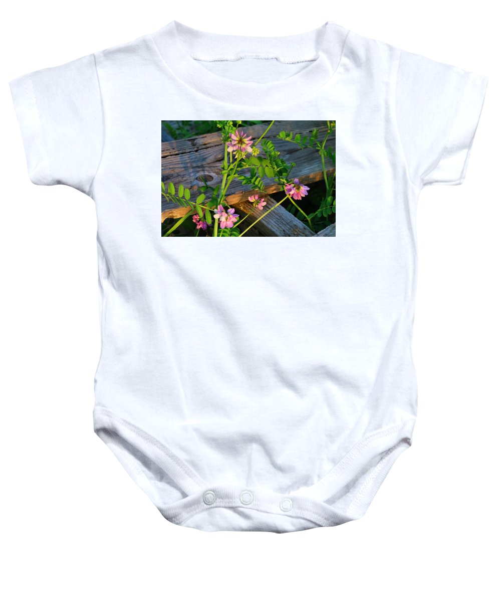 Crownvetch Baby Onesie featuring the photograph Crown Vetch 2 by Kathryn Meyer