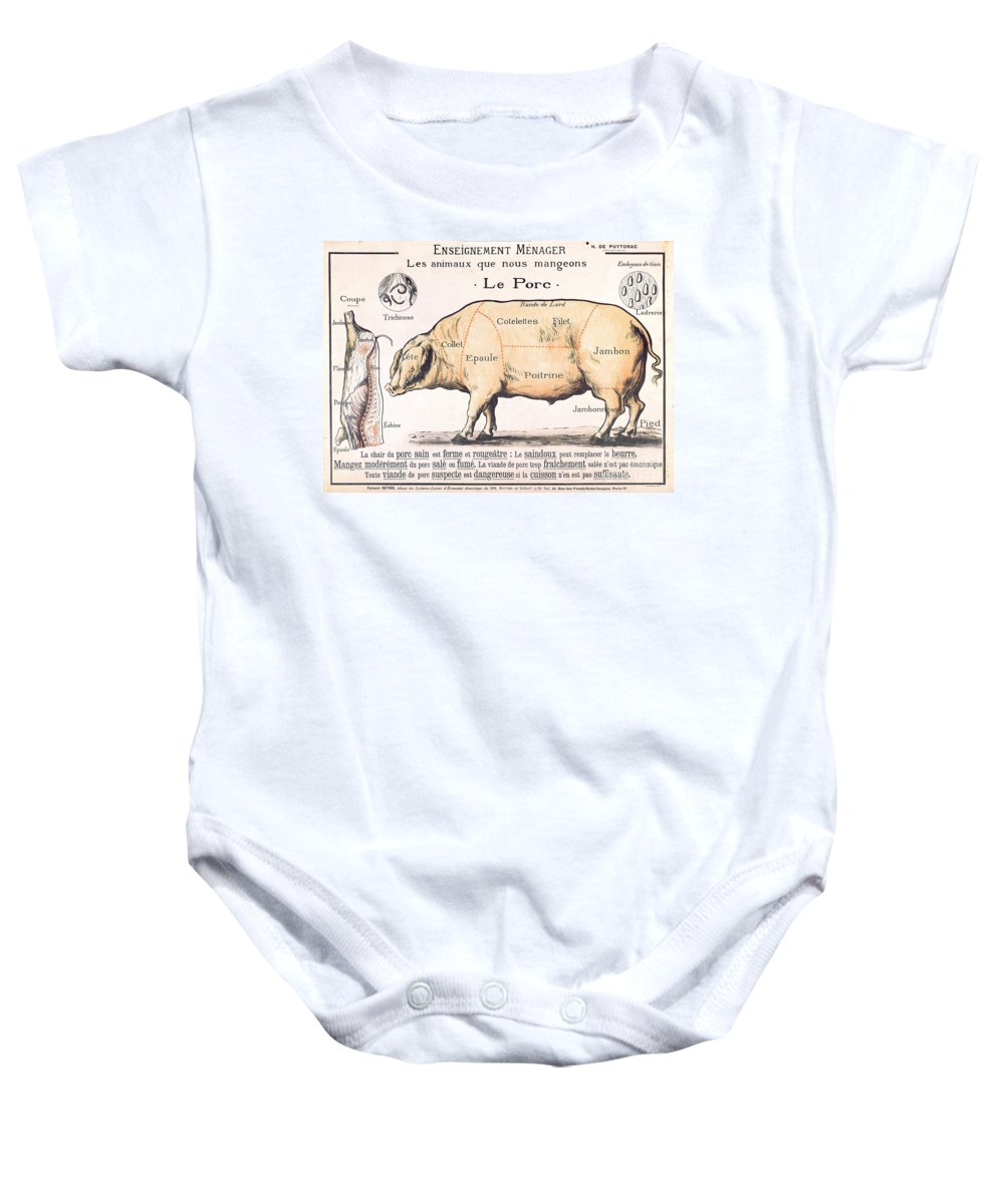 Eating;farm Animals; Cross Section; Loin; Rump; Flank; Butcher; Joint; Pig; Pigs; Shoulder; Ham; Belly; Shoulder; Diagram; Slaughter; Farming; Food Preparation; Domestic Science; Nutrition;teaching;education;home Economics; Farming; Breed;butchering Baby Onesie featuring the drawing Cuts Of Pork by French School