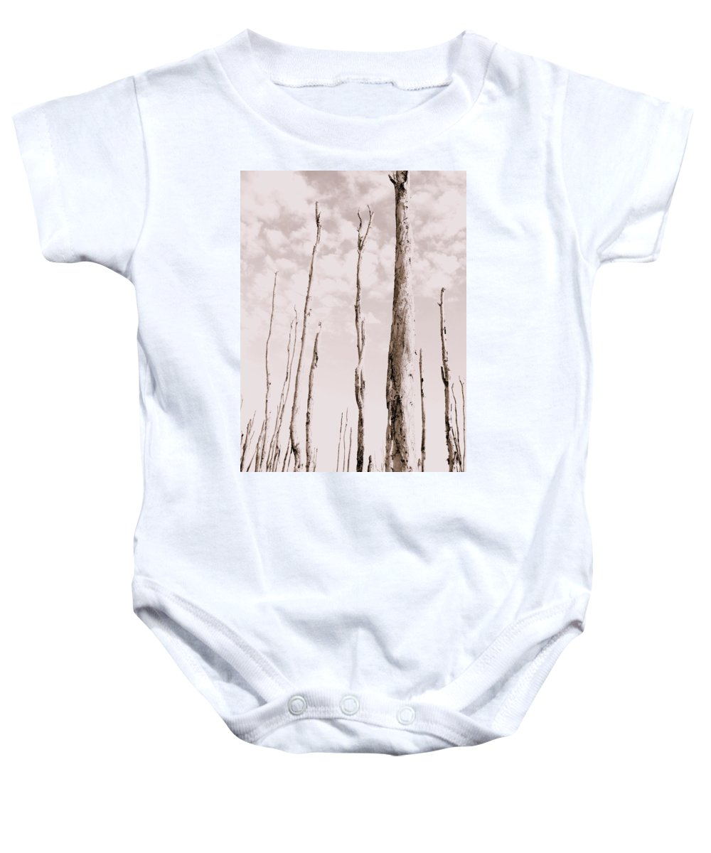 Forest Baby Onesie featuring the photograph Death Of A Forest by Ed Smith