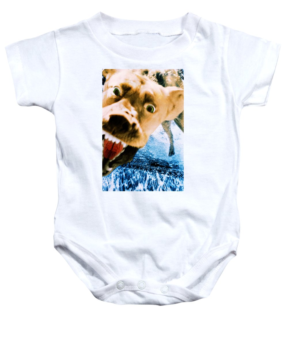 Dog Baby Onesie featuring the photograph Devil Dog Underwater by Jill Reger