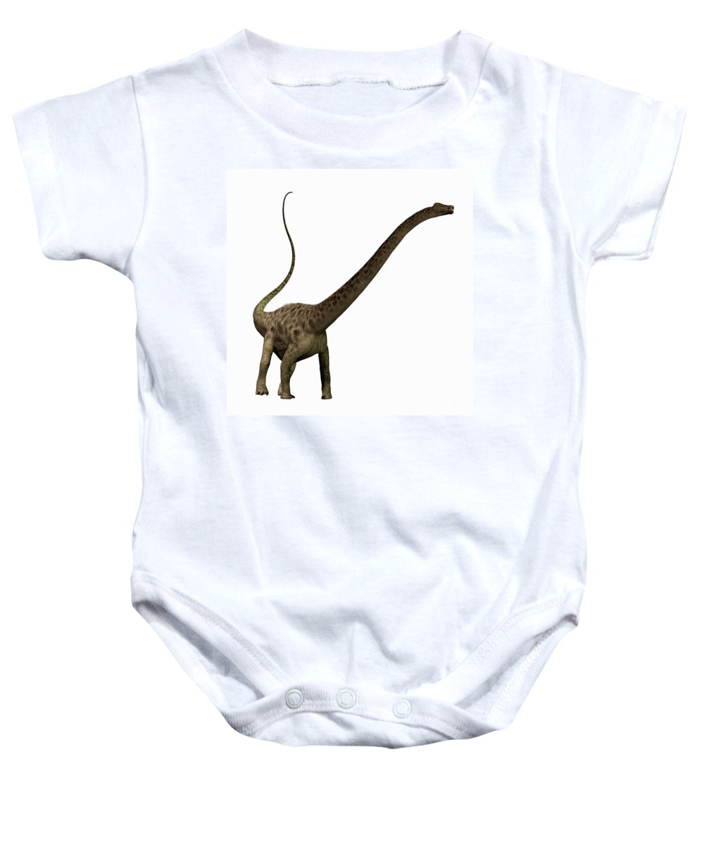 Diplodocus Baby Onesie featuring the painting Diplodocus Profile by Corey Ford