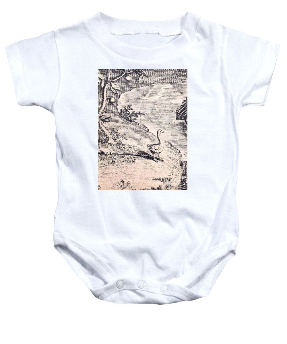 Dodo Baby Onesie featuring the photograph Dodo Bird, Hunted To Extinction by Biodiversity Heritage Library
