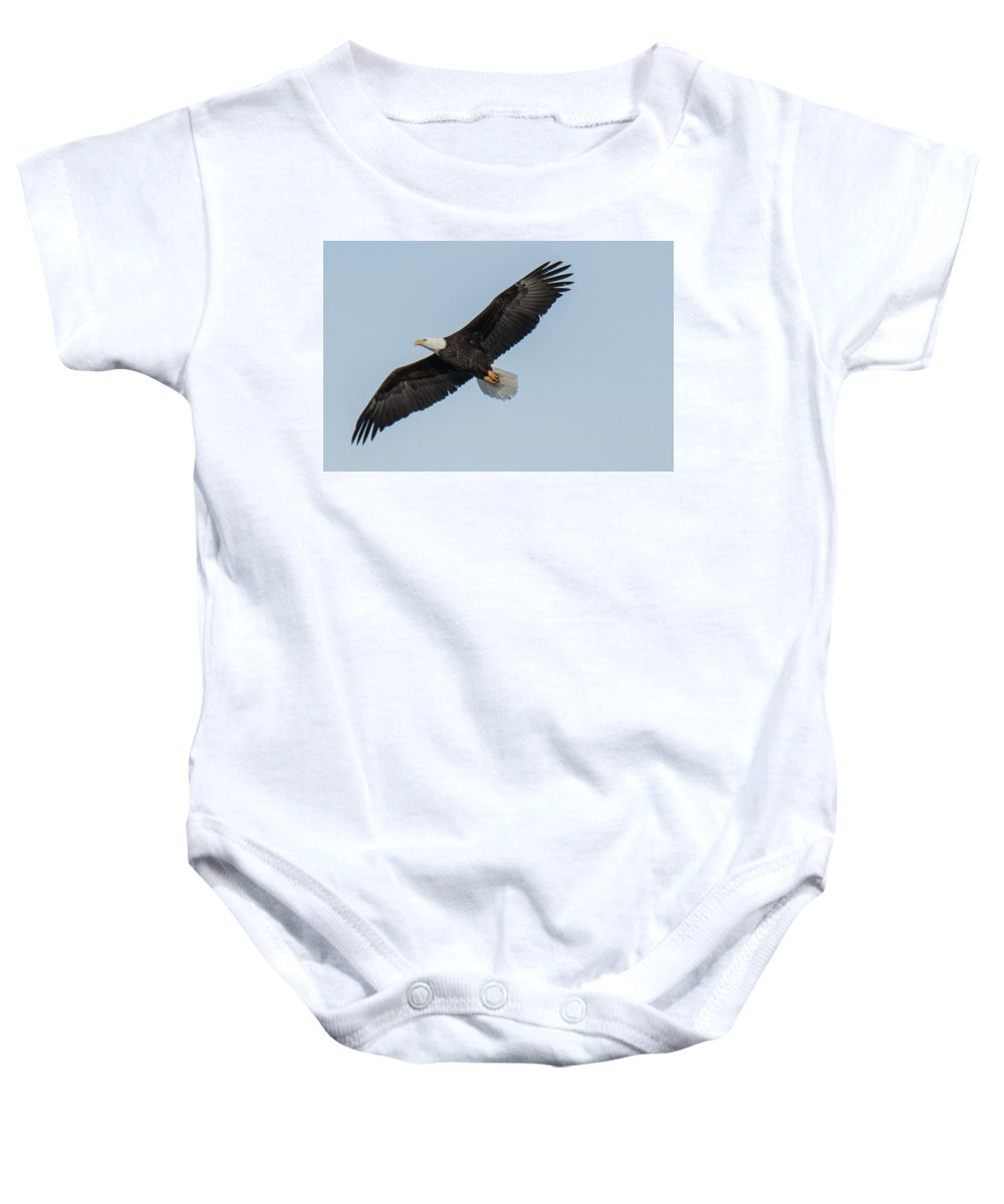 Eagle Baby Onesie featuring the photograph Eagle Soar by Judd Nathan