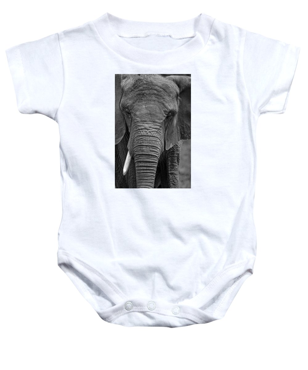 Elephant Baby Onesie featuring the photograph Elephant In Black And White by Matt Plyler