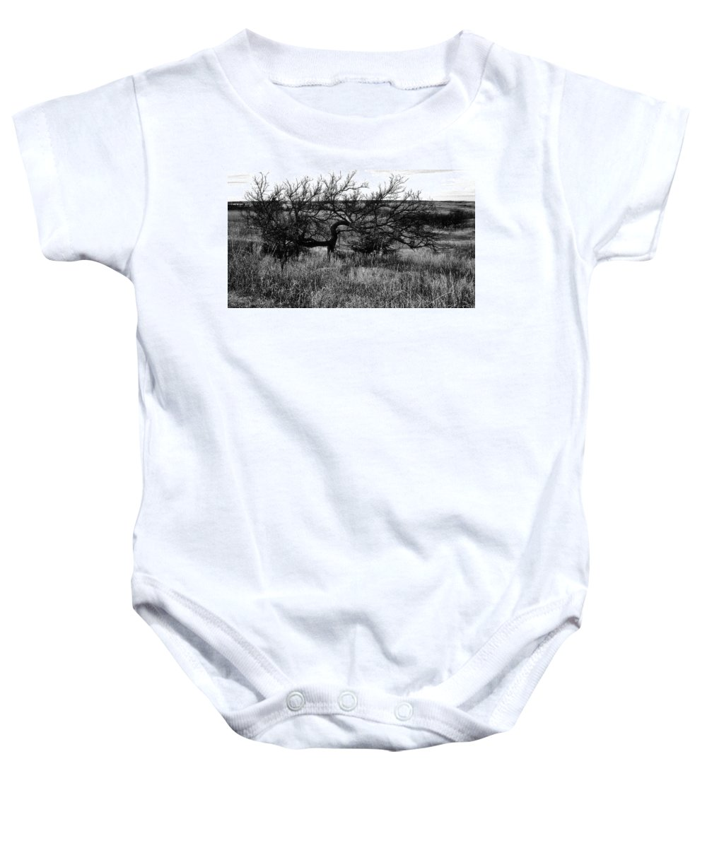 Tree Baby Onesie featuring the photograph Every Which Way But Loose by Lynne And Don Wright