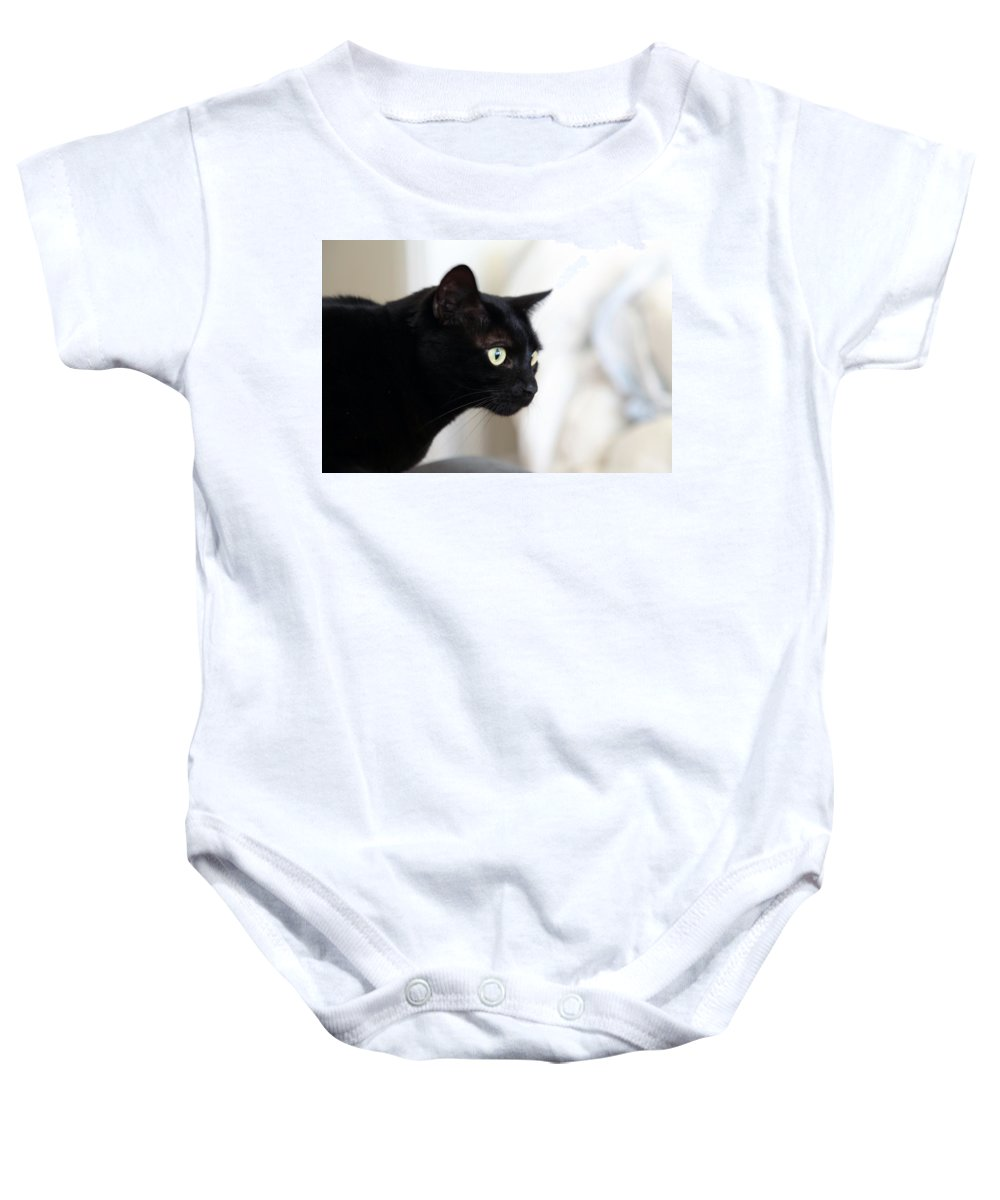 Cats Baby Onesie featuring the photograph Feline On The Prowl by Portraits By NC