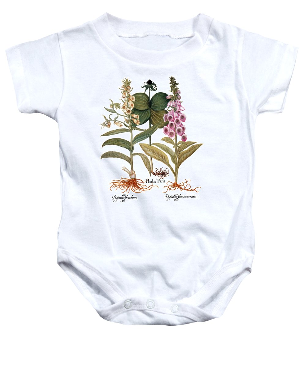 1613 Baby Onesie featuring the photograph Foxglove And Herb Paris by Granger