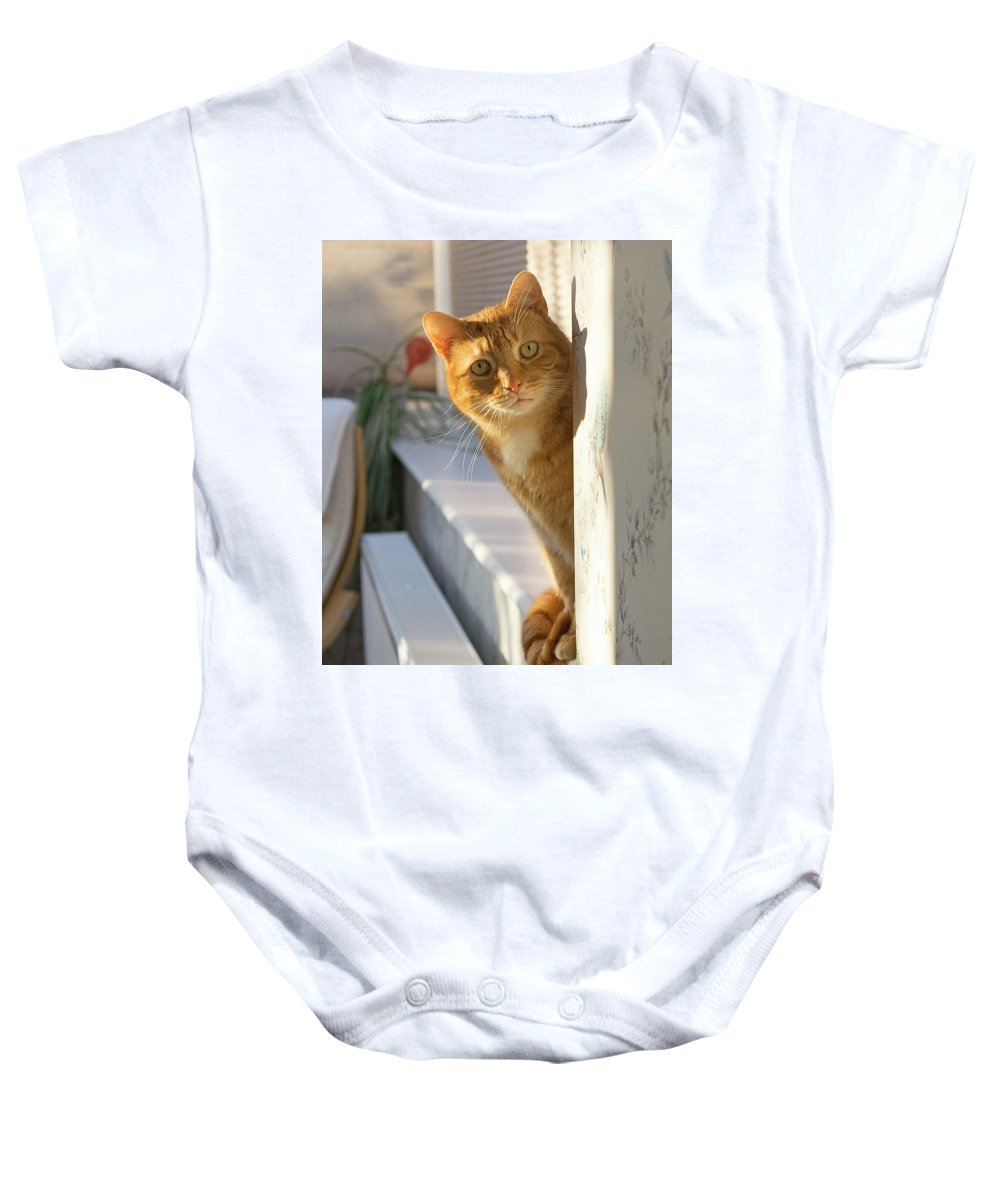 Ginger Baby Onesie featuring the photograph Ginger Cat by Richard Seekins