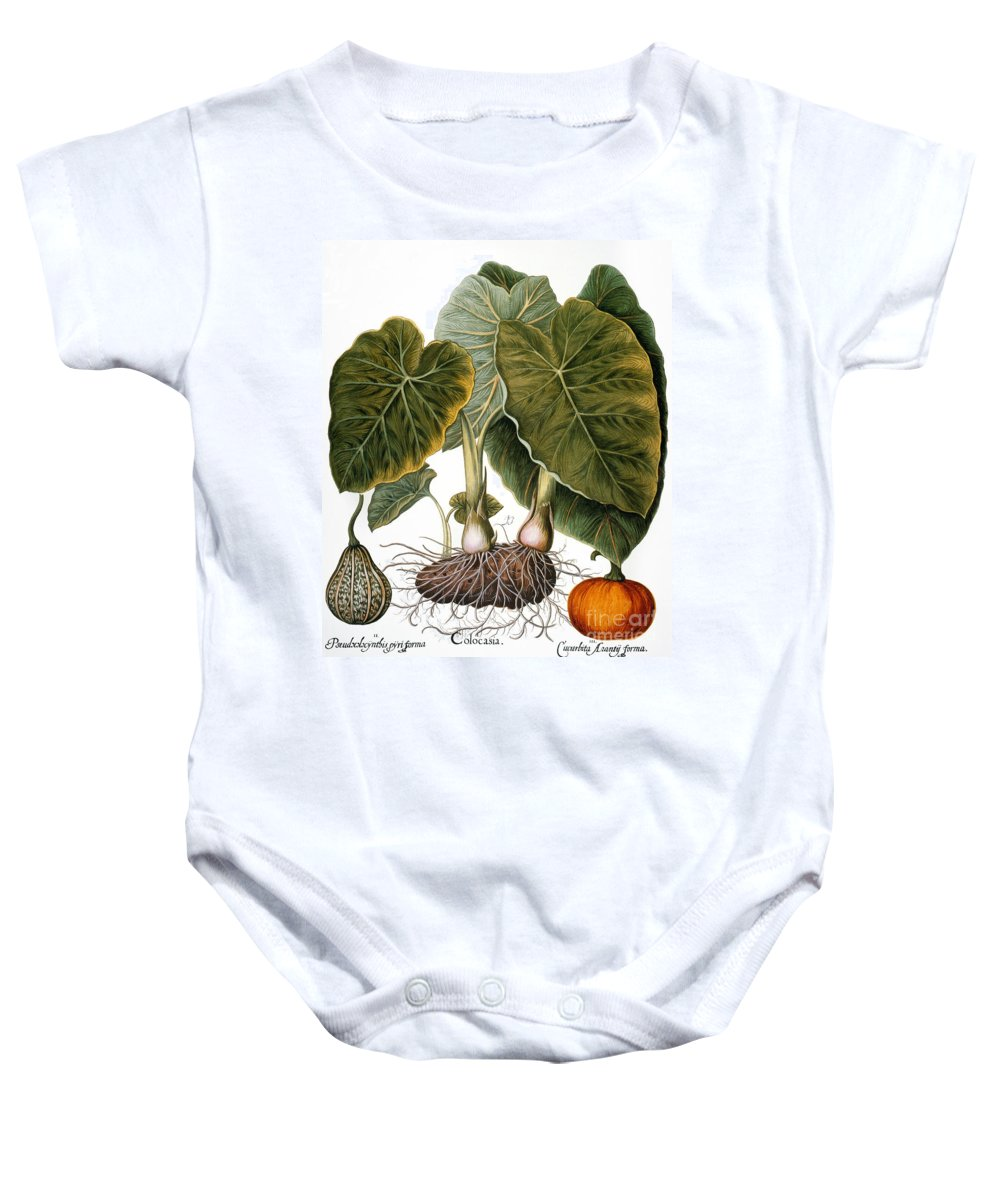 1613 Baby Onesie featuring the photograph Gourd, Taro, & Pumpkin by Granger