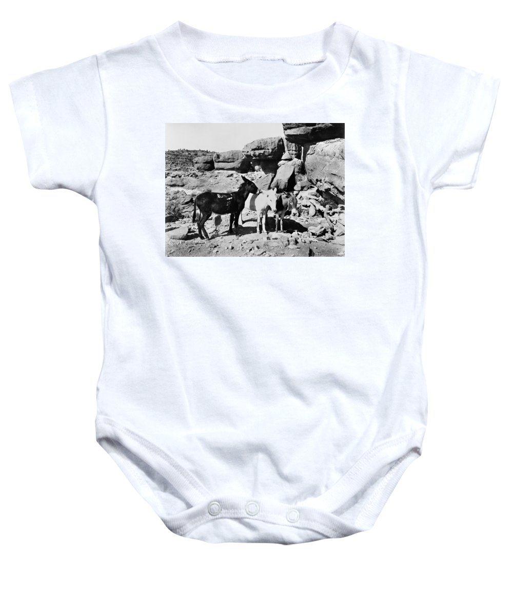 1890 Baby Onesie featuring the photograph Grand Canyon: Donkeys by Granger