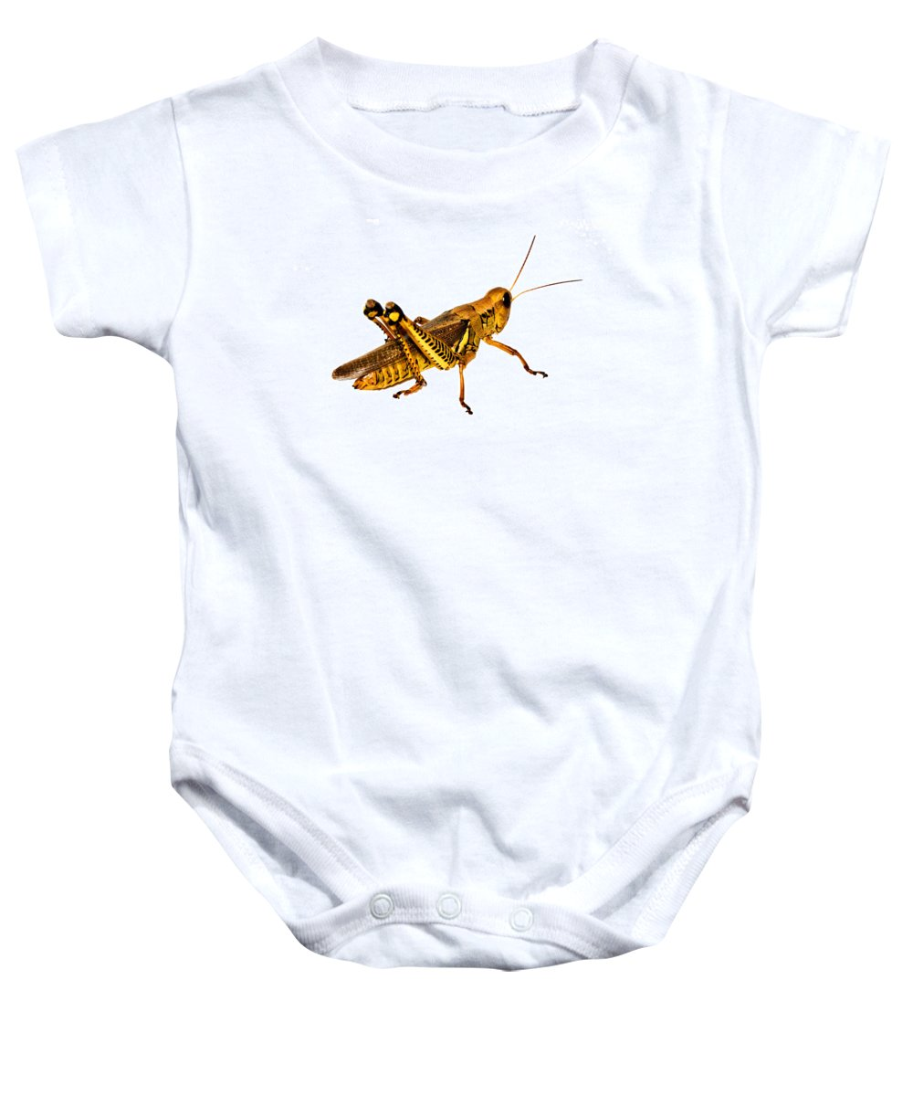 Insect Baby Onesie featuring the photograph Grasshopper I by Gary Adkins