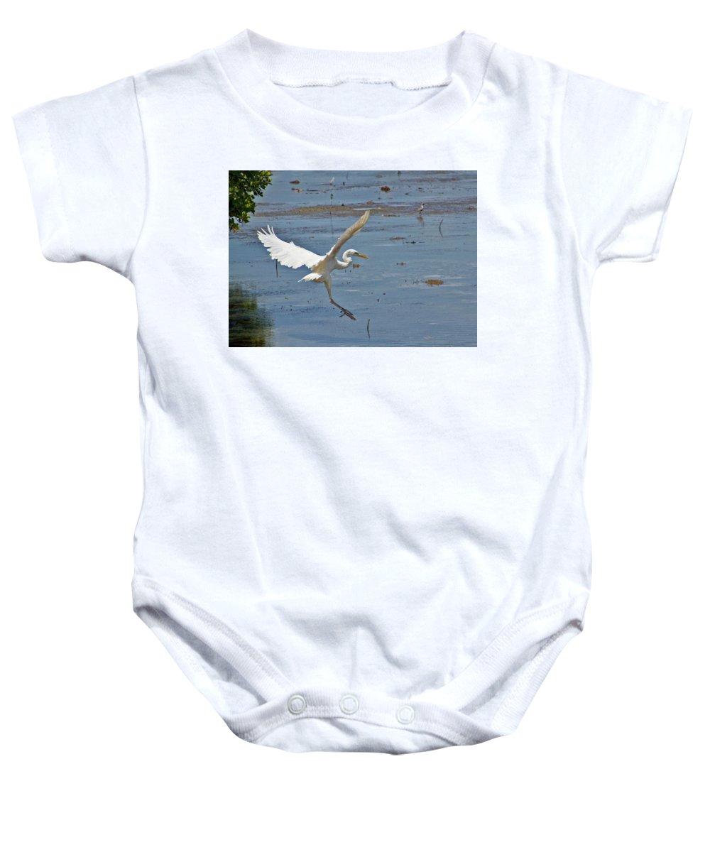 Bird Baby Onesie featuring the photograph Great Egret Ascending by Bob Slitzan