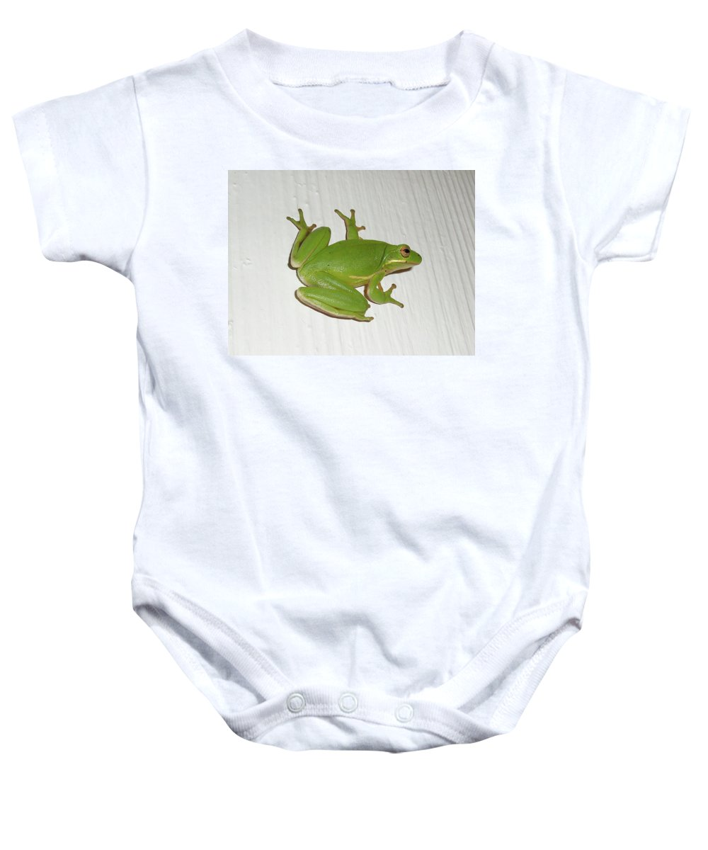 Frog Baby Onesie featuring the photograph Green Tree Frog - Hyla Cinerea by Mother Nature