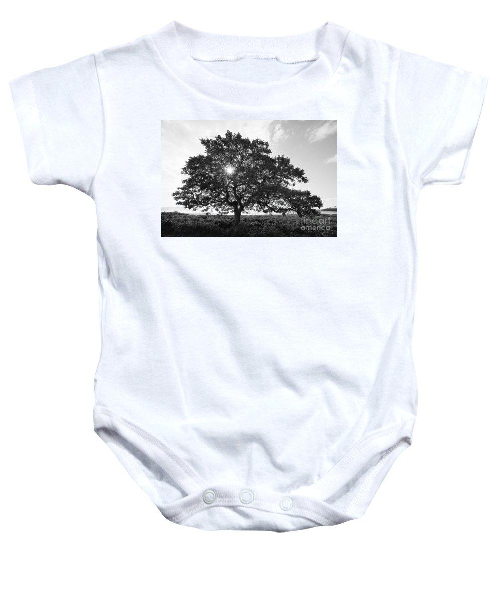 Art Medium Baby Onesie featuring the photograph Hapuna Beach Park by Carl Shaneff - Printscapes