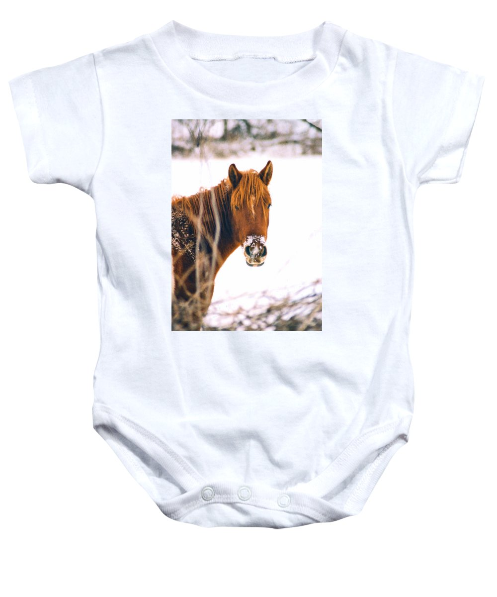 Horse Baby Onesie featuring the photograph Horse In Winter by Steve Karol
