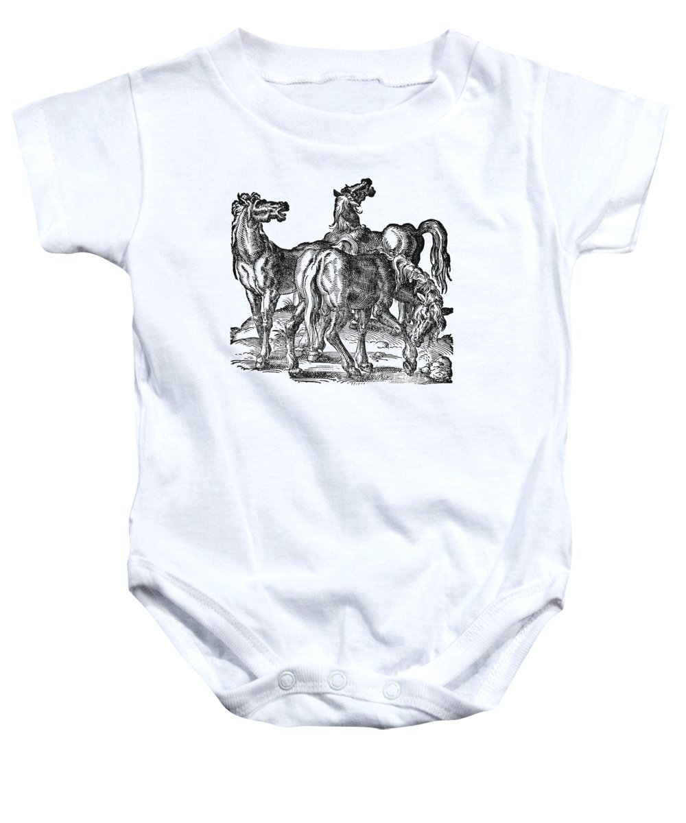 1584 Baby Onesie featuring the photograph Horses by Granger
