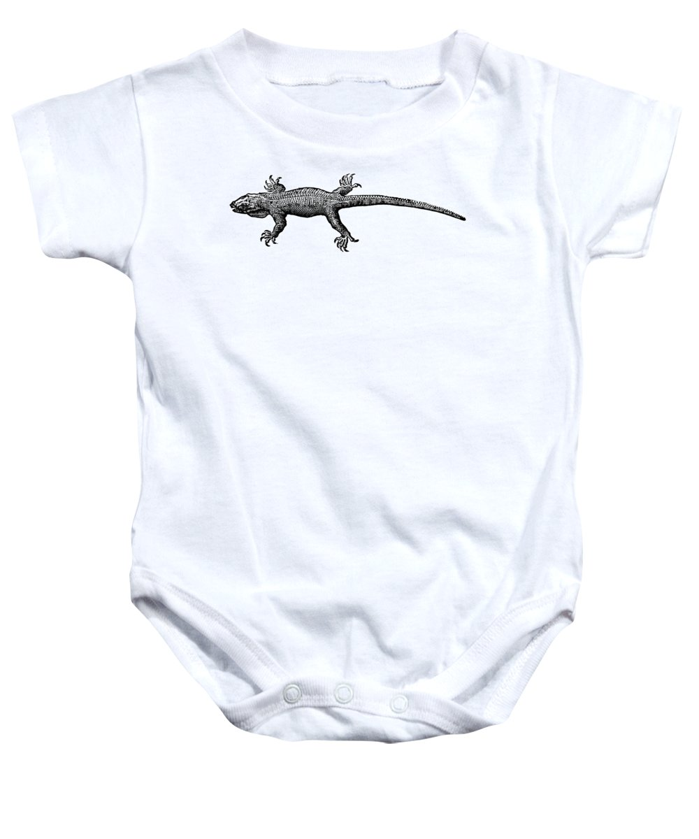 1630 Baby Onesie featuring the photograph Iguana by Granger