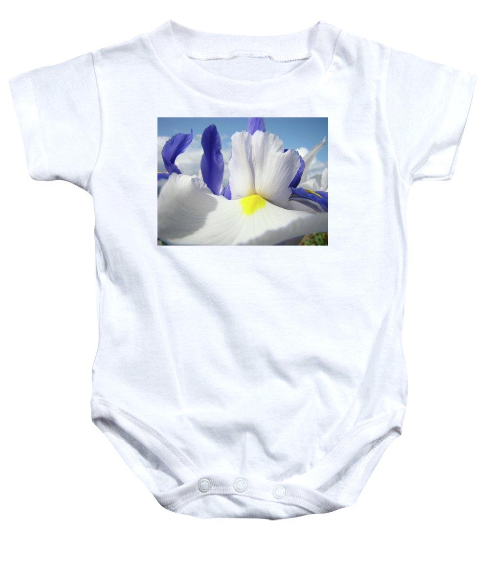 �irises Artwork� Baby Onesie featuring the photograph Irises White Iris Flowers 15 Purple Irises Art Prints Floral Artwork by Baslee Troutman