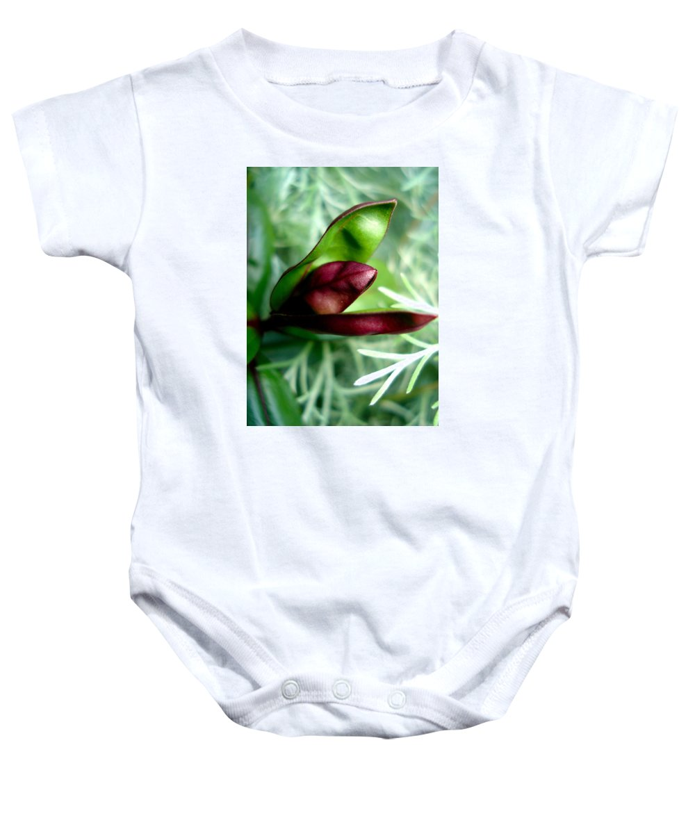 Flowers Baby Onesie featuring the photograph Jack In The Pulpit 4 by Nelson F Martinez