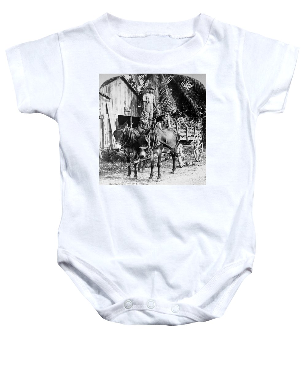 1890 Baby Onesie featuring the photograph Jamaica: Bananas, C1900 by Granger