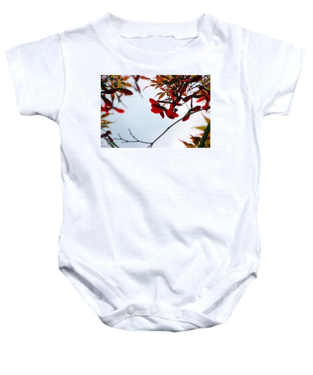 Maple Baby Onesie featuring the photograph Japanese Maple 1589 by Carolyn Stagger Cokley