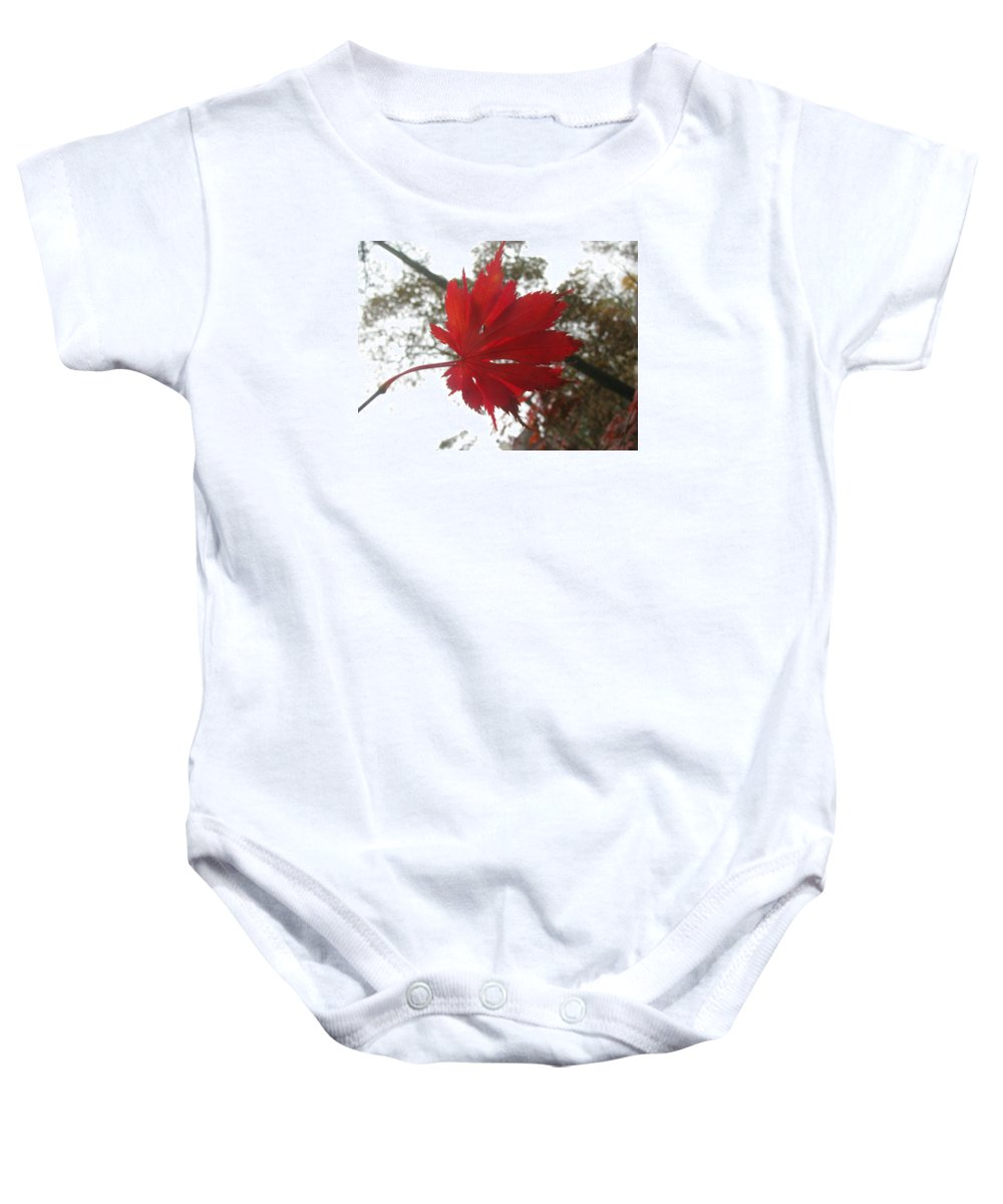 Maple Baby Onesie featuring the photograph Japanese Maple Leaf 2 by Jeffrey Todd Moore